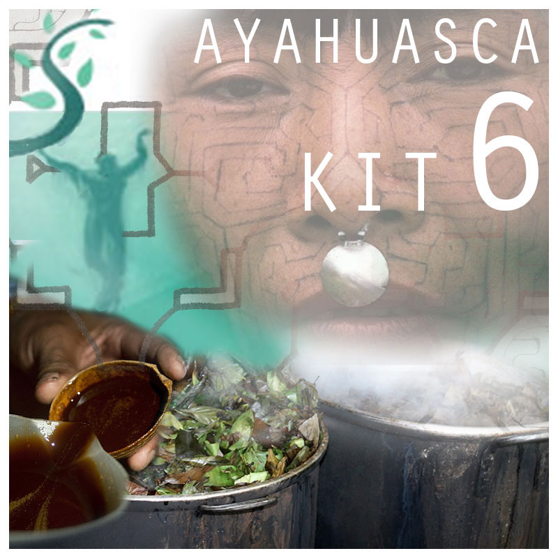 Ayahuasca Kit 6